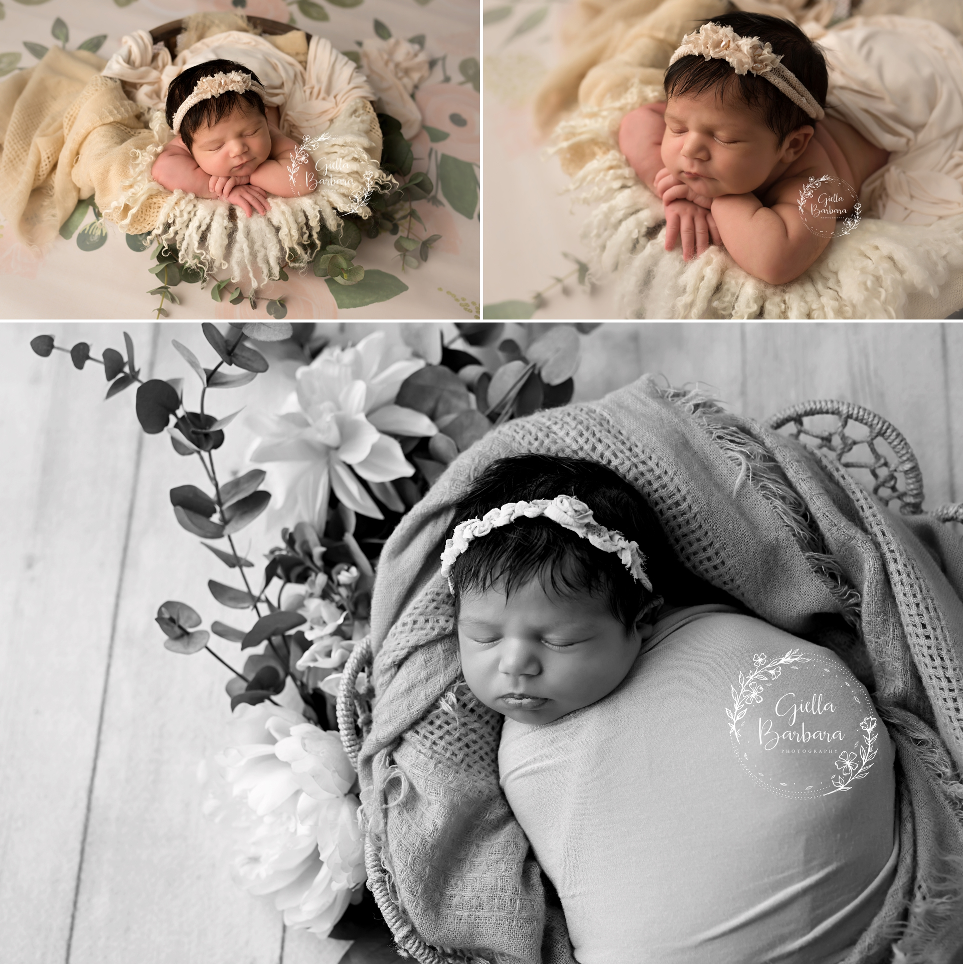 Newborn Girl Studio Photography
