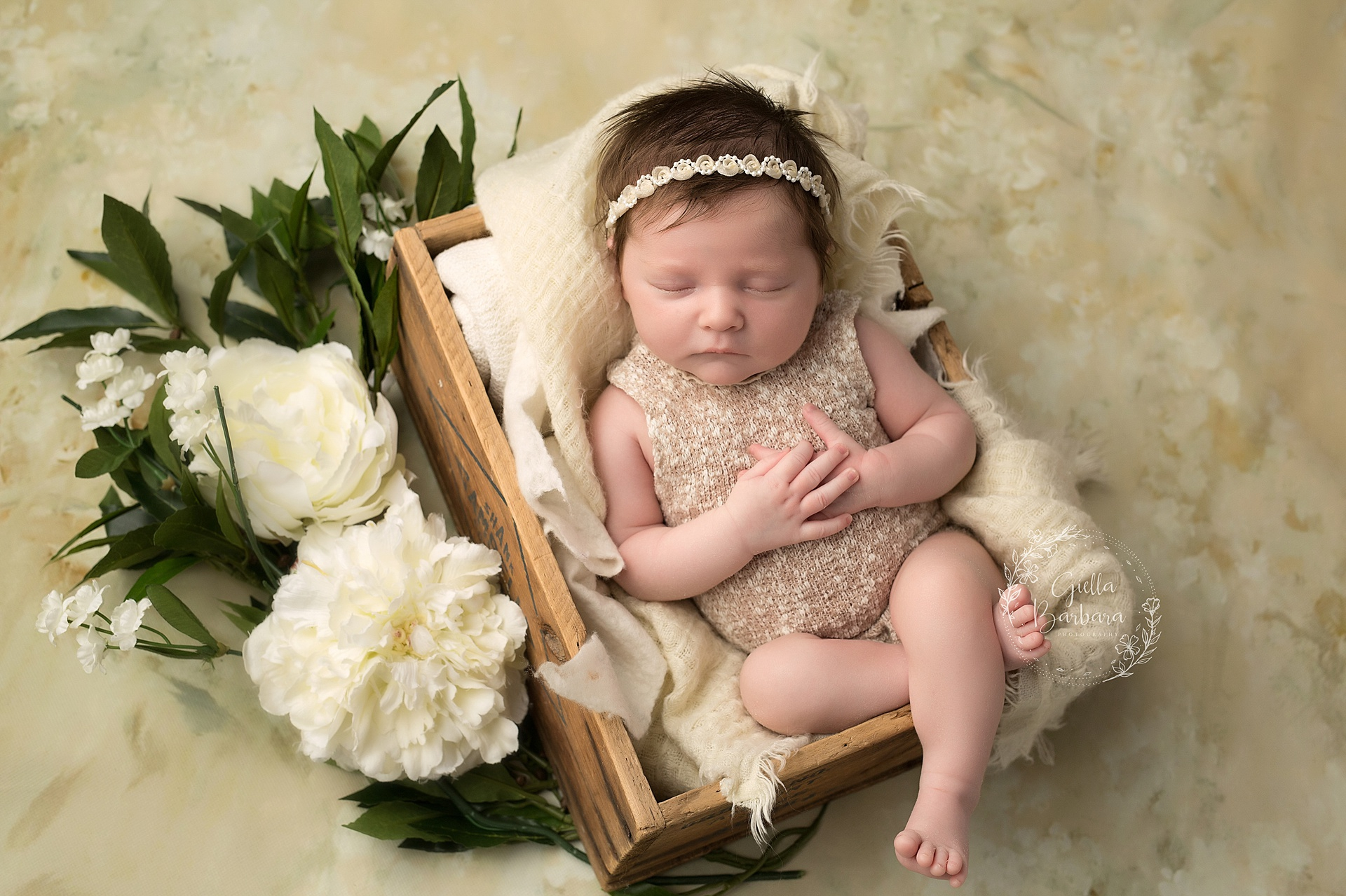 New Jersey Newborn Photographers