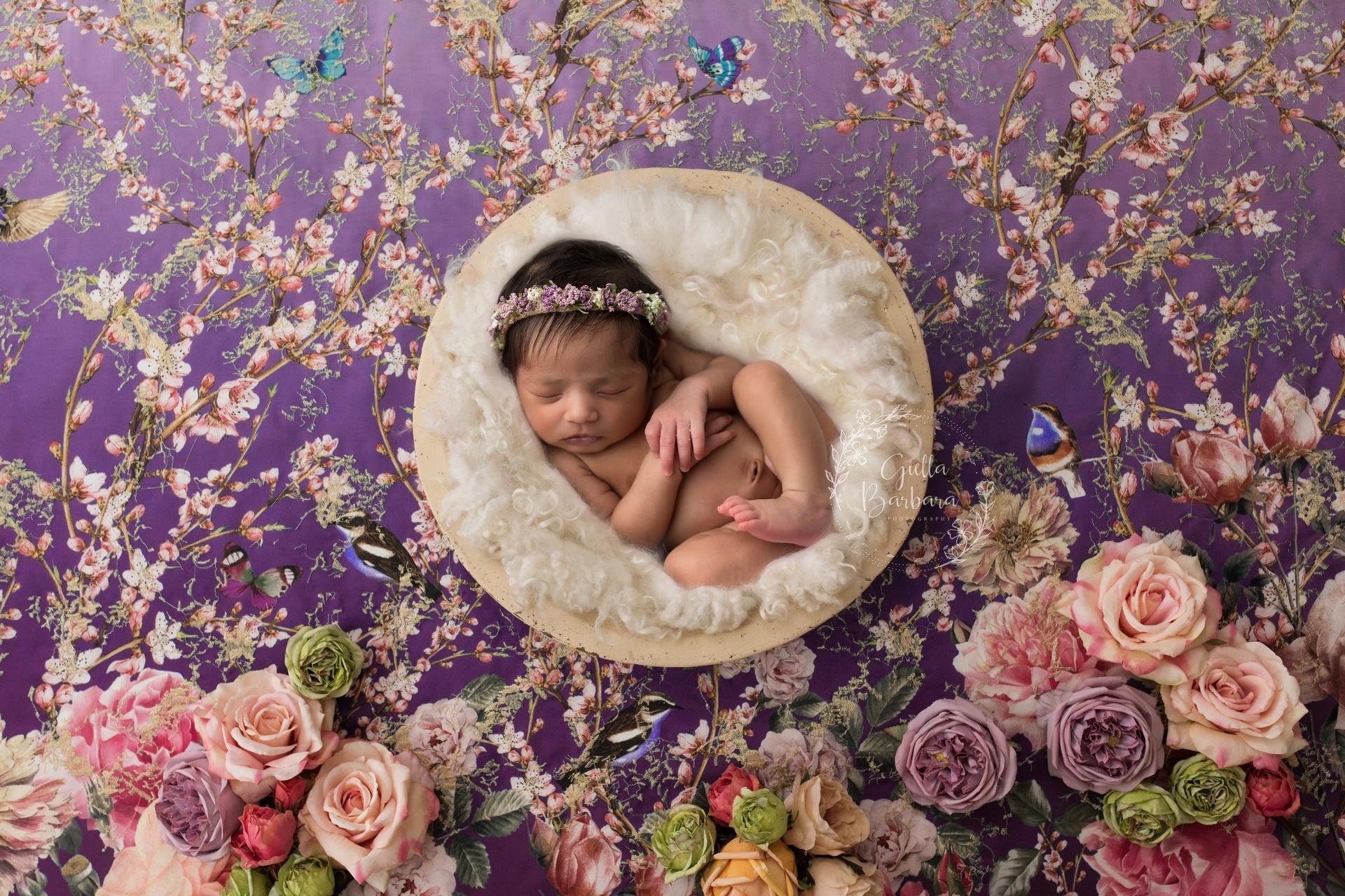 Baby Girl Newborn Session